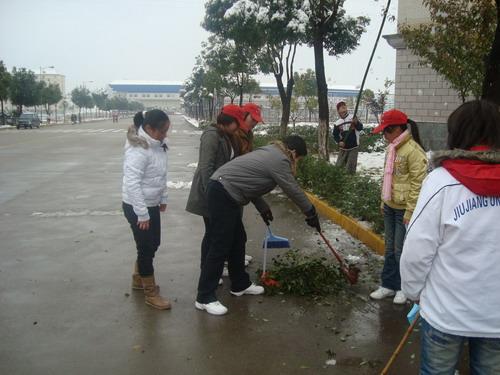 序地在立信楼前广场开始了扫雪活动.有的几个人合作摇落树上的积雪图片